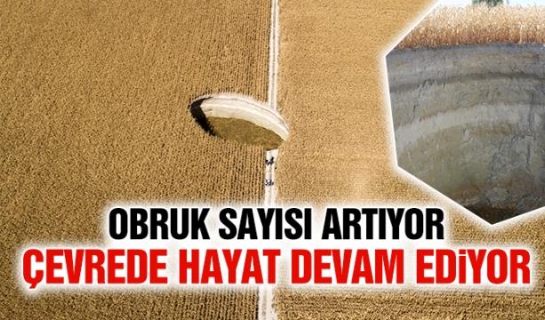 Erdoğan, Hollanda Başbakanı ile telefonda görüştü