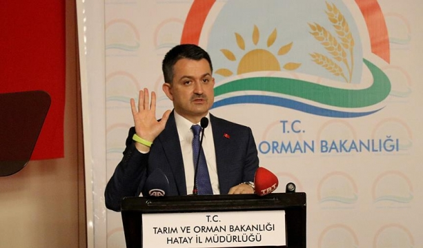 Rovshan Aliyev'e tuzağı sağ kolu kurmuş