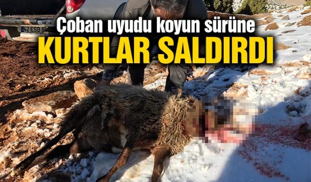 Hakkari Çukurca'da çatışma: 2 asker şehit
