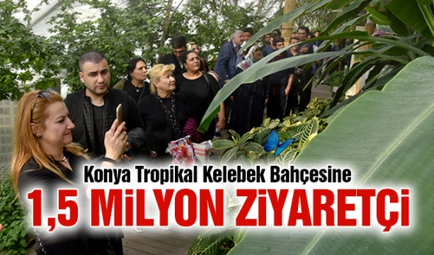Seçim için baskı yapan 35 kişi gözaltında