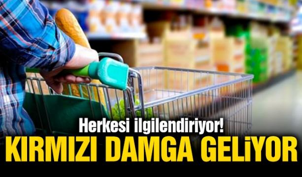 Konya'daki konut satışında büyük artış!