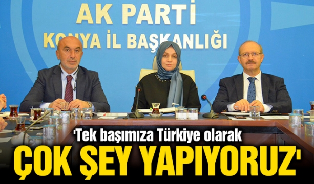 Alper Arıkoğlu TBF'de göreve devam ediyor