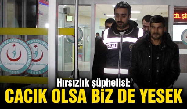 HDP eski milletvekili Ayla Akat Ata tutuklandı