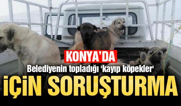 Atiker Konyaspor'un kupadaki ilk sınavı