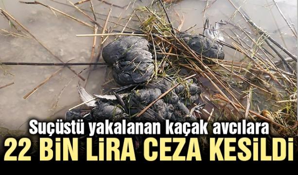 HDP'li vekile 103 yıl hapis cezası istemi
