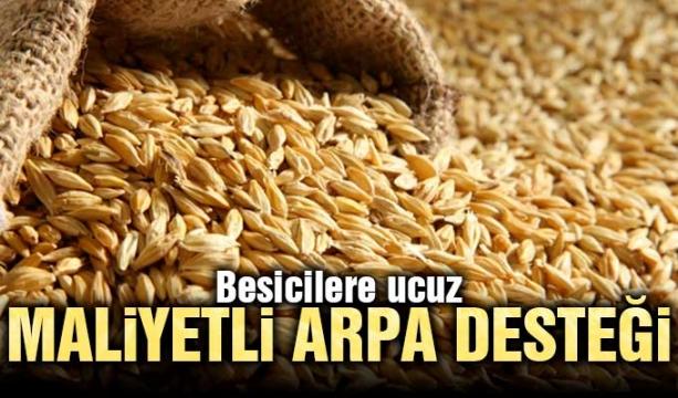 Konya Büyükşehir'den çiftçiye fidan desteği