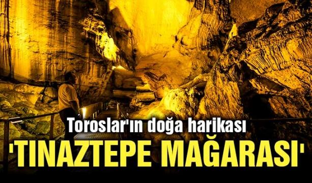 Selahattin Demirtaş'ın cezası hakkında önemli karar!
