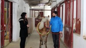 Atlı terapiyle şifa buluyorlar...