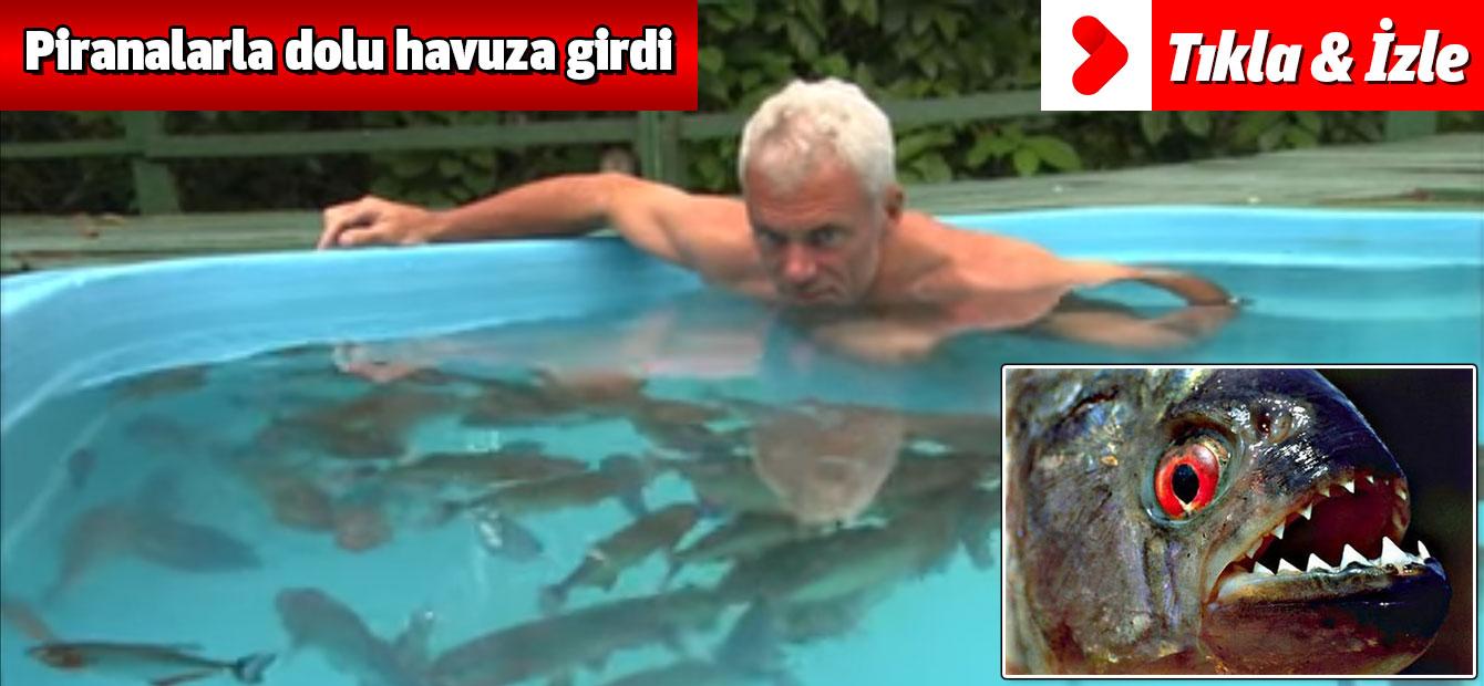 Piranalarla dolu havuza girdi