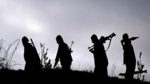 Üst düzey PKK'lı öldürüldü