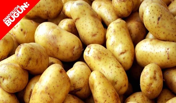 Patates üretiminde Konya ikinci #konyahaber