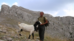 Dağın zirvesinde hayvanlarını otlatıyor #konyahaber