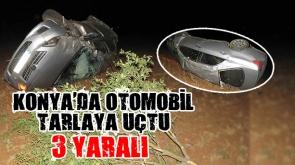 Konya'da otomobil tarlaya uçtu: 3 yaralı #konyahaber