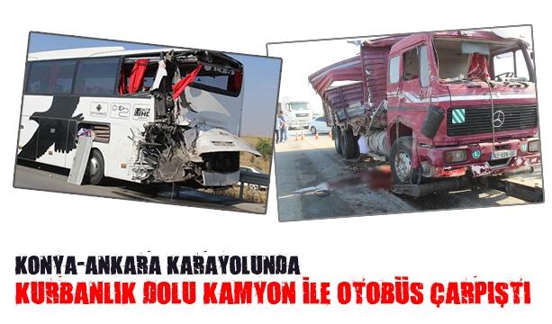 Kurbanlık dolu kamyon ile otobüs çarpıştı #konyahaber