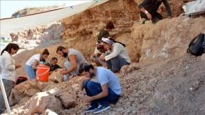 Milyon yıllık fosillere uluslararası ilgi