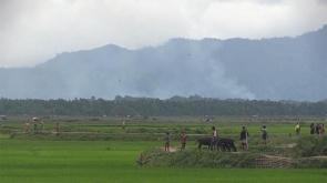 Arakan'dan dumanlar yükseliyor