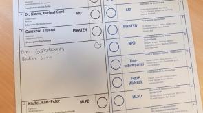 Almanya seçimlerinde Gomis sürprizi!