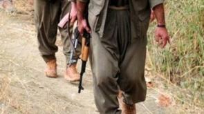 PKK, Şemdinli'de Suriyeli göçmenleri vurdu!