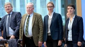 Almanya'da meclise girmeye hak kazanan AfD partisinde ilk çatlak