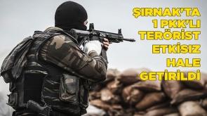 Şırnak'ta 1 PKK'lı terörist etkisiz hale getirildi
