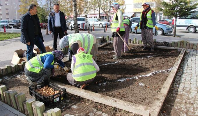 Konya Haber:  Konya Seydişehir Belediyesi lale, sümbül ve nergis soğan ekimi yaptı