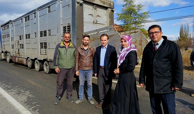 Konya Haber:  Konya Yalıhüyük'de çiftçilere hibe hayvan dağıtımı