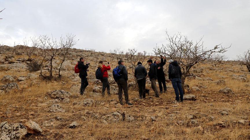 Türkiye'nin bozkırları korumaya alınıyor