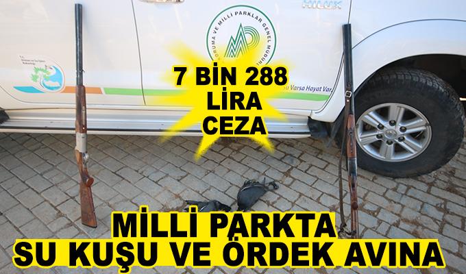 Konya Haber: Milli parkta su kuşu ve ördek avına 7 bin 288 lira ceza