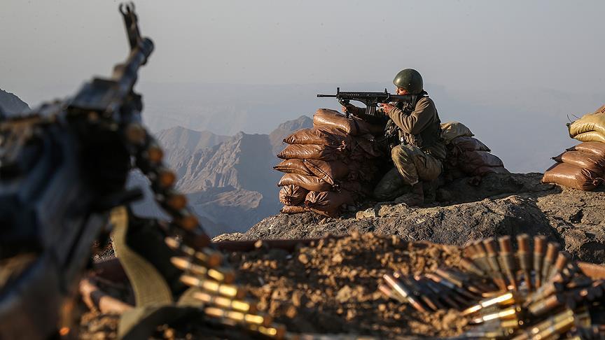 Mardin'de saldırı hazırlığındaki 2 terörist etkisiz hale getirildi