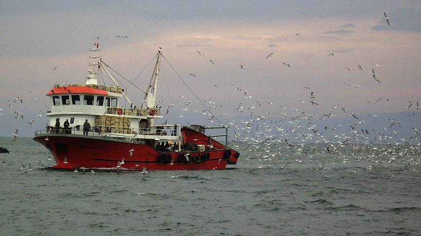 Türk tekneleri kaçan hamsinin peşine düştü