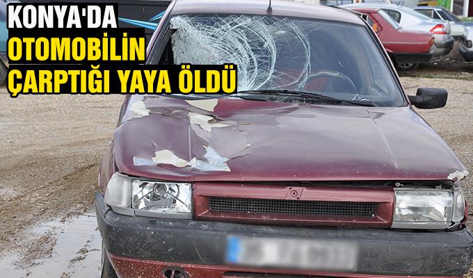 Konya Haber: Konya'da otomobilin çarptığı yaya öldü