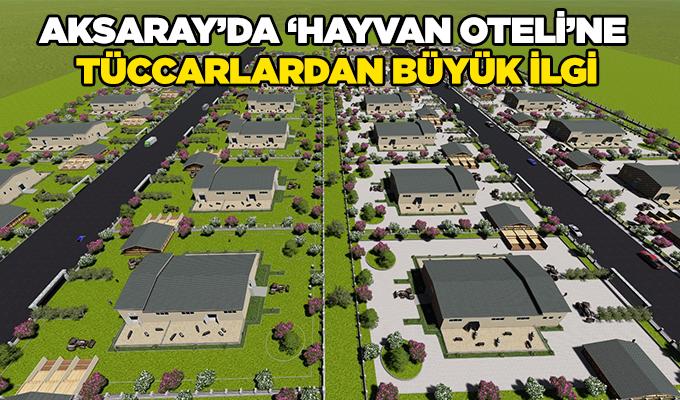 Aksaray'da 'Hayvan Oteli'ne tüccarlardan büyük ilgi