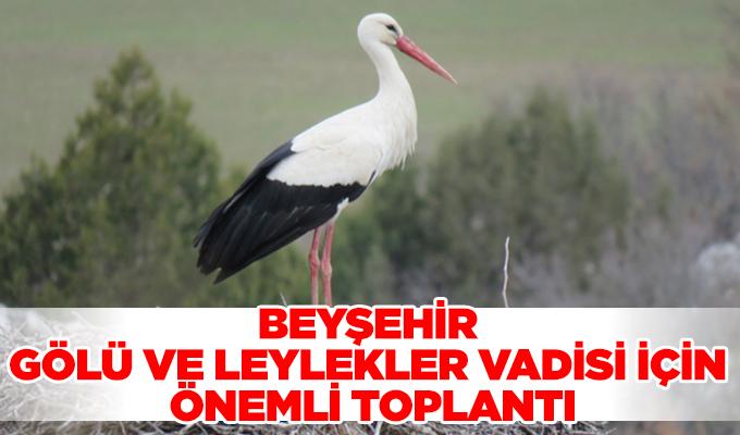 Konya Haber: Konya Beyşehir Gölü ve Leylekler Vadisi için önemli toplantı