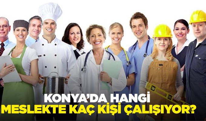 Konya Haber: Rakamlarla Konya'nın meslek haritası!