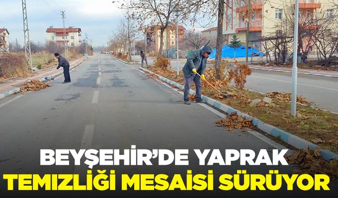 Konya Haber: Konya Beyşehir'de yaprak temizliği mesaisi sürüyor