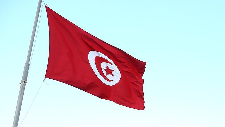 Tunus, Türkiye'ye ihracatı artırmak istiyor