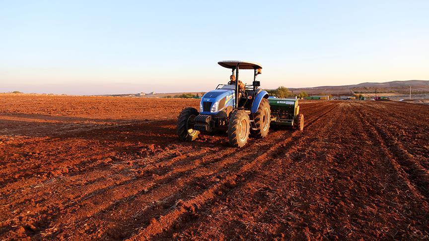 Şanlıurfa tarımda altın yılını yaşadı