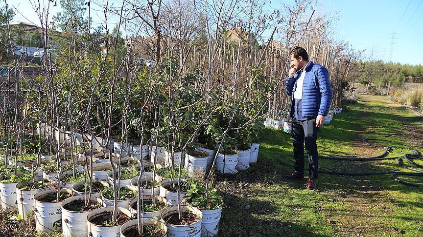 Diyarbakırlı çiftçiler belediye desteğiyle organik tarıma yöneliyor