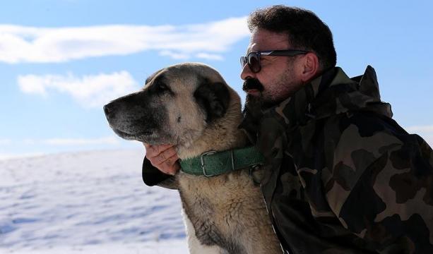 Ömrünü Kangal köpeği yetiştiriciliğine adadı