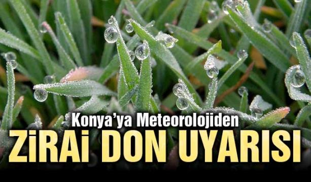 Konya'ya Meteorolojiden zirai don uyarısı