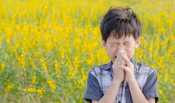 Çocuklarda Polen Alerjisine Dikkat