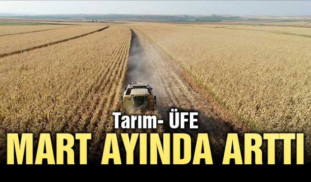 Tarım- ÜFE Mart ayında arttı