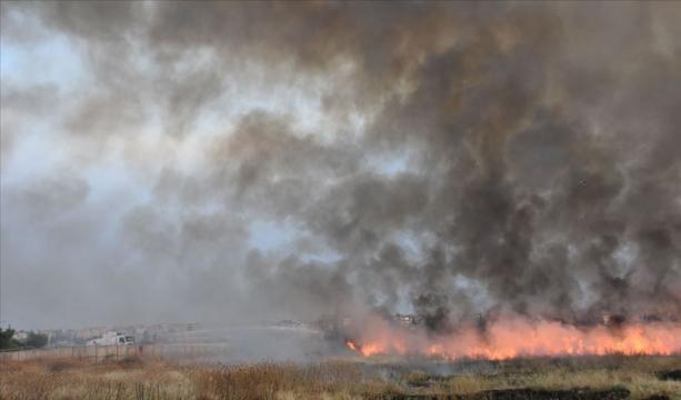 YPG/PKK işgalindeki bölgelerde yangın tehdidi
